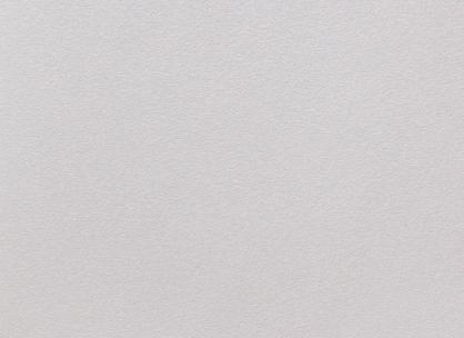 Виниловые обои на бумажной основе LS Рико ВКП 4-1372