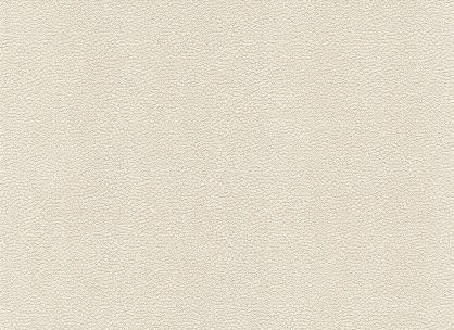 Виниловые обои на бумажной основе LS Алина ВКП1-1176