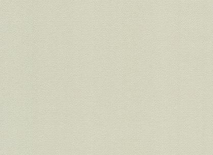 Виниловые обои на бумажной основе LS Скерцо ВКП 2-1371